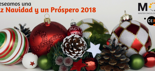 El CEB les desea una Feliz Navidad y Año Nuevo